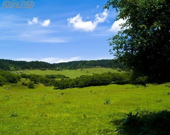 仙女山国家森林公园是国家aaaaa级景区,位于重庆市武隆区,总面积