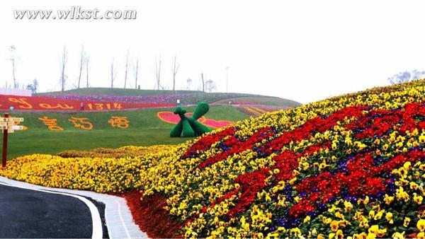 寻找春天的气息,不妨先看看重庆渝北兴隆花海旅游攻略,看点,门票价格