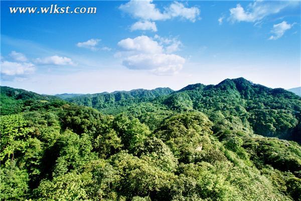 """白马山市级自然保护区获""""最美森林氧吧""""提名"""